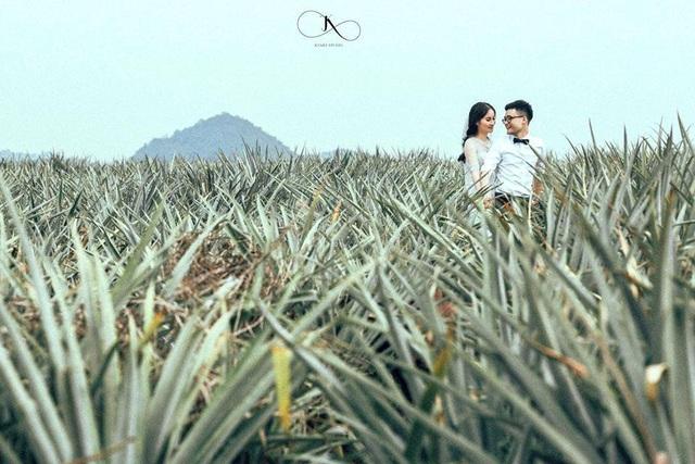 """Check-in cánh đồng dứa đẹp hút mắt, khiến dân phượt phát """"sốt"""" ở Ninh Bình - 13"""