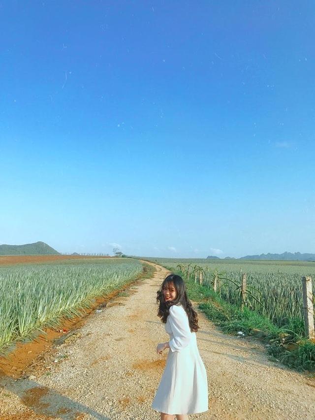 """Check-in cánh đồng dứa đẹp hút mắt, khiến dân phượt phát """"sốt"""" ở Ninh Bình - 9"""