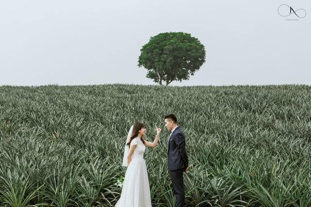 """Check-in cánh đồng dứa đẹp hút mắt, khiến dân phượt phát """"sốt"""" ở Ninh Bình - 10"""