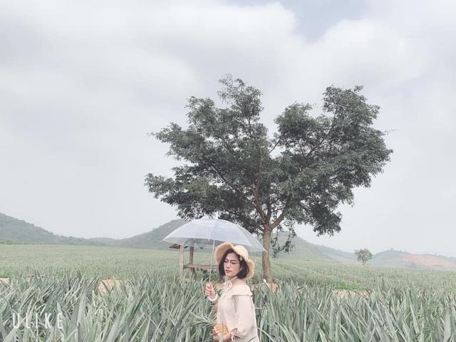 """Check-in cánh đồng dứa đẹp hút mắt, khiến dân phượt phát """"sốt"""" ở Ninh Bình - 14"""