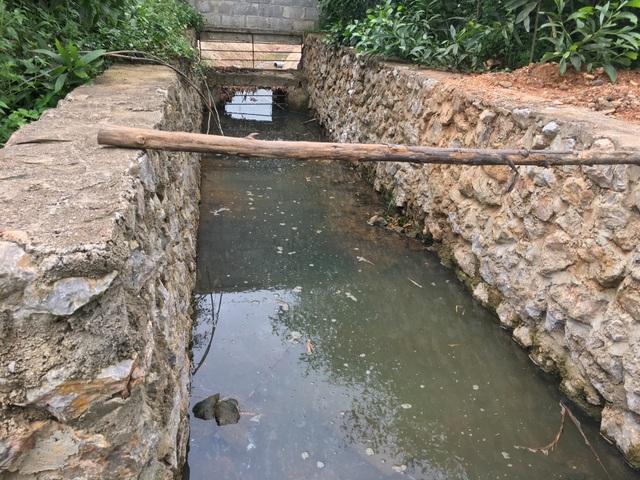 Nghệ An: Trang trại lợn công nghệ cao bức tử môi trường, dân yêu cầu dừng hoạt động - 6
