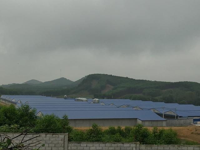 Nghệ An: Trang trại lợn công nghệ cao bức tử môi trường, dân yêu cầu dừng hoạt động - 8