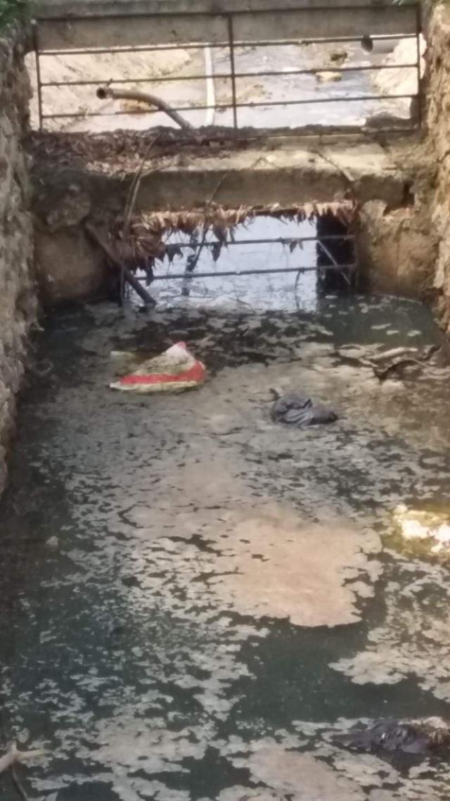 Nghệ An: Trang trại lợn công nghệ cao bức tử môi trường, dân yêu cầu dừng hoạt động - 13