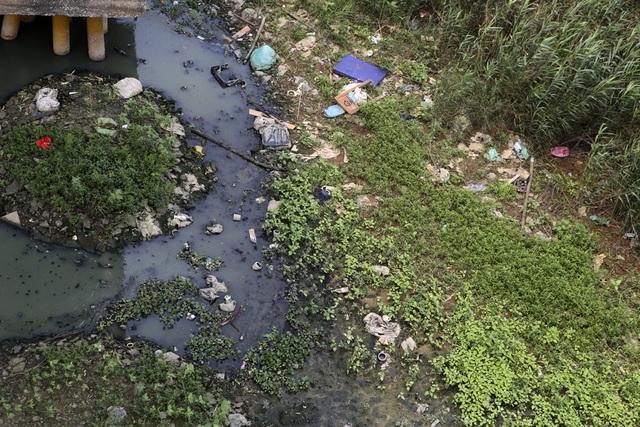 Khúc sông thối dưới cầu Long Biên ô nhiễm nghiêm trọng - 3