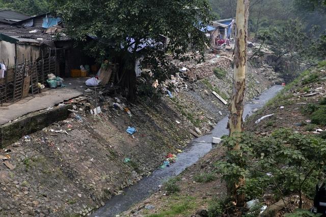 Khúc sông thối dưới cầu Long Biên ô nhiễm nghiêm trọng - 6