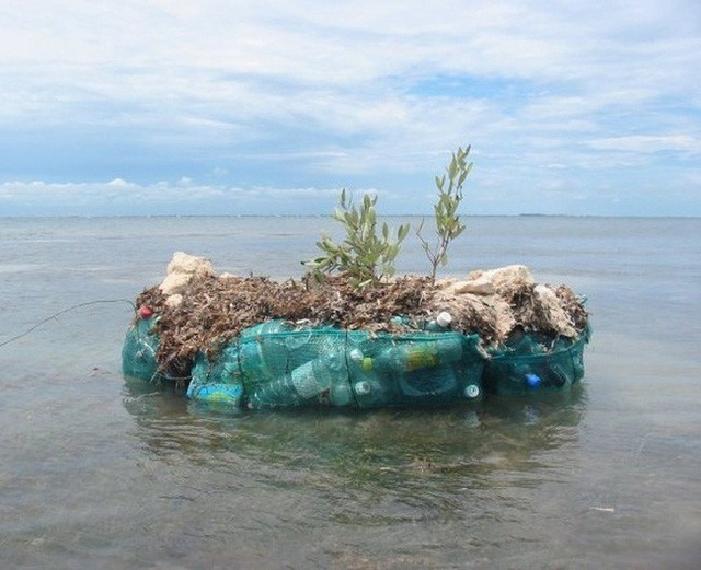 Người đàn ông xây đảo bằng chai nhựa suốt 7 năm để bảo vệ môi trường - 5
