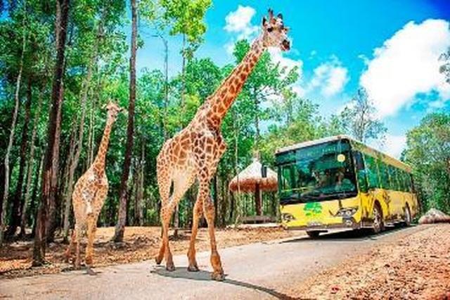 """Liên tiếp thú hiếm sinh nở tại """"ngôi nhà động vật năm châu"""" Vinpearl Safari - 10"""