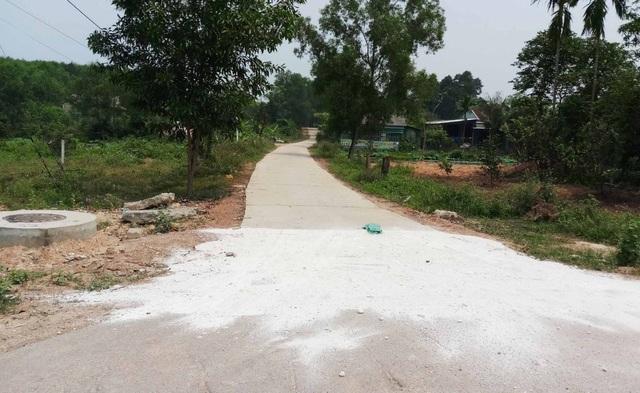 Xuất hiện thêm ổ dịch tả lợn mới ở Thừa Thiên Huế - 2
