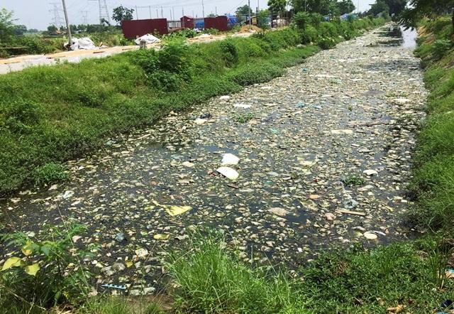 Kênh ngập rác thải biến thành đường hoa ở Hà Nội - 1