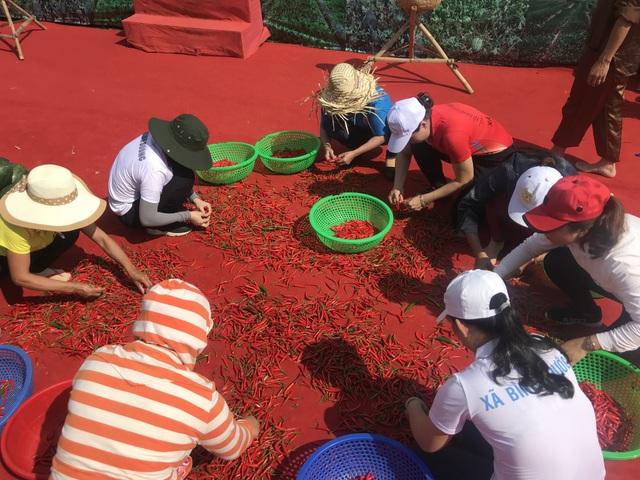Quảng Ngãi:  Độc đáo lễ hội dưa hấu Bình Sơn - 4