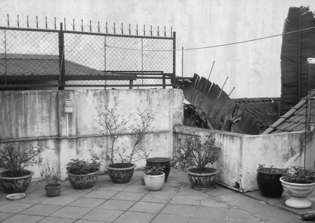 """Nhà xập xệ trong phố cổ Hà Nội """"lột xác"""" đẹp xuất sắc khiến báo Tây cũng mê - 18"""