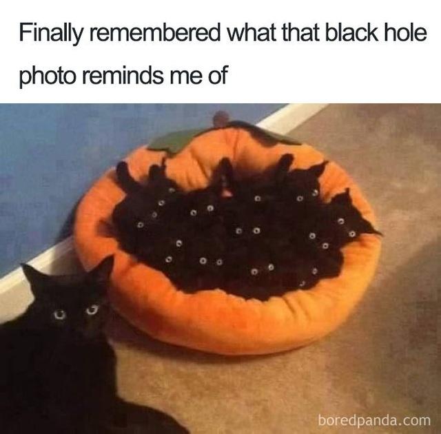 Chết cười với phản ứng của cộng đồng mạng khi lần đầu nhìn thấy Hố đen! - 5
