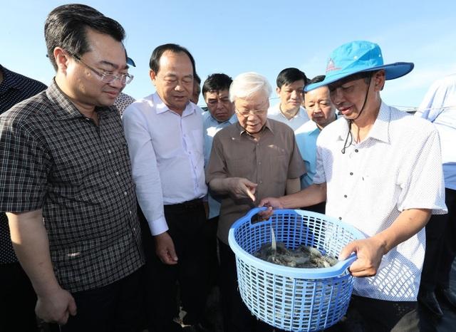 Tổng Bí thư, Chủ tịch nước làm việc với lãnh đạo chủ chốt tỉnh Kiên Giang - 2