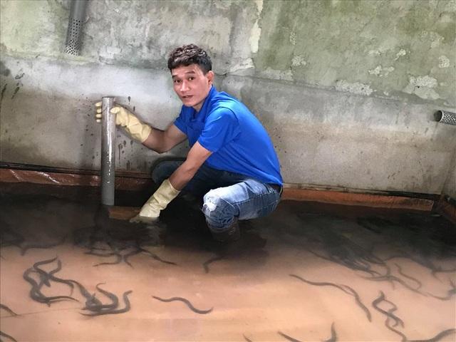 Nuôi lươn đồng không dùng bùn, chàng trai trẻ thu hàng trăm triệu/năm - 2