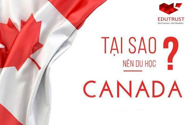 Cách thức và con đường định cư tại Canada dành cho sinh viên Việt Nam năm 2019 - 2