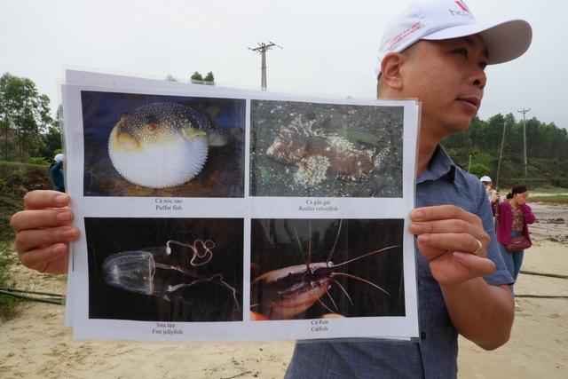 Một ngày làm ngư dân ở đảo Quan Lạn: Một mẻ lưới thu cả chục kg cá - 3