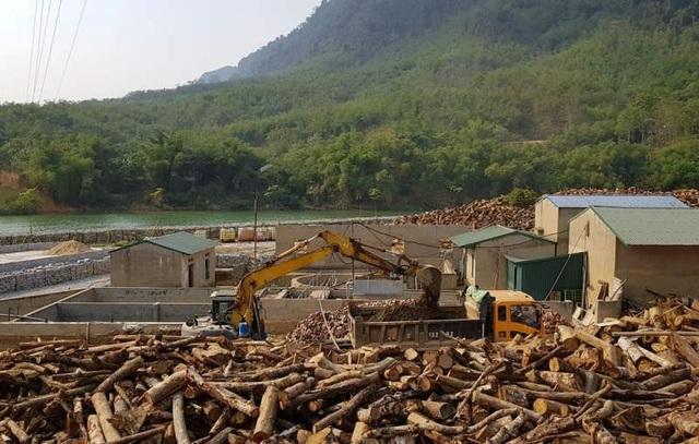 Đổ hàng nghìn khối đá xây kè lấn sông Mã làm nhà xưởng - 4