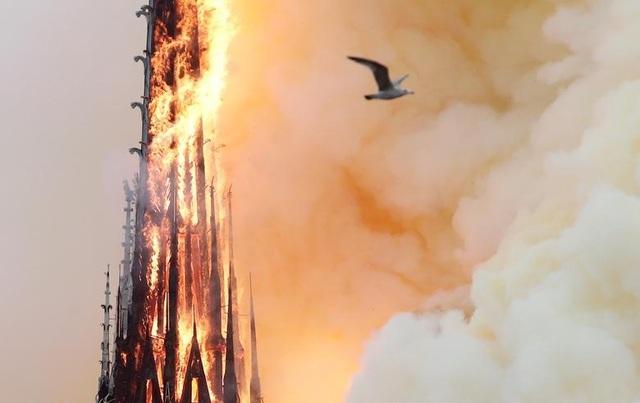 Những hình ảnh đầu tiên bên trong Nhà thờ Đức Bà Paris sau hỏa hoạn dữ dội - 17