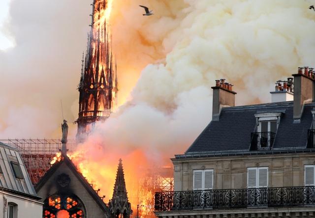 """Nhà thờ Đức Bà: Dấu ấn di sản gần 9 thế kỷ giữa """"trái tim"""" Paris - 7"""