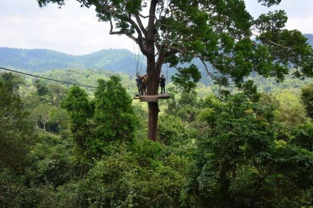 Rơi từ độ cao 100m, du khách Canada thiệt mạng khi chơi trượt zipline ở Thái Lan - 1