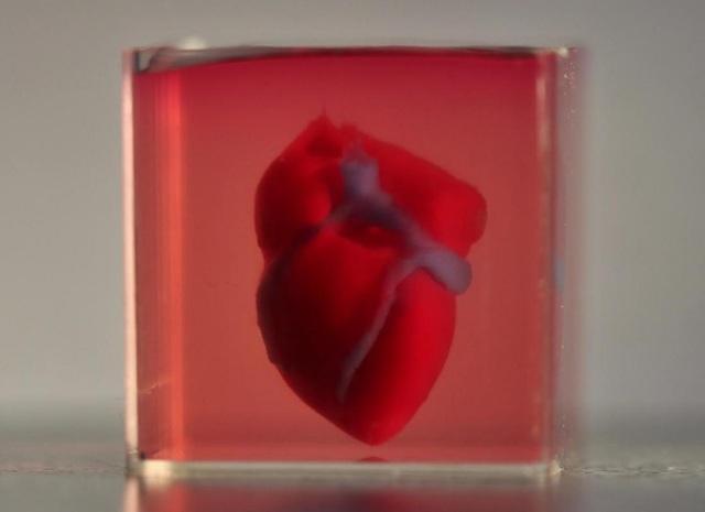 """""""In"""" quả tim 3D bằng mô của bệnh nhân - 1"""
