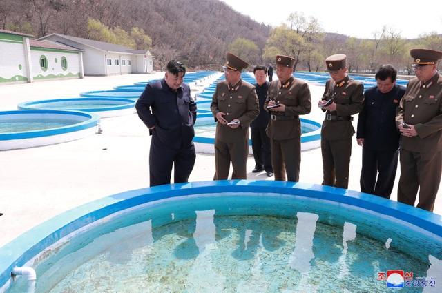 Ông Kim Jong-un thị sát không quân giữa lúc đàm phán bế tắc với Mỹ - Ảnh minh hoạ 2