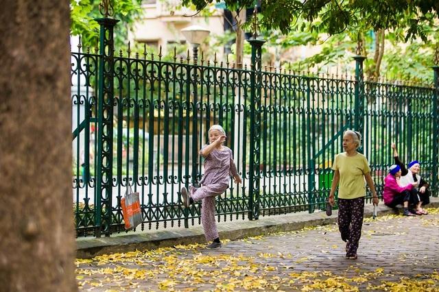 Ngẩn ngơ trước vẻ đẹp của phố phường Hà Nội mùa lá rụng - 11