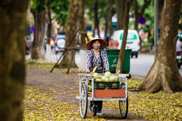 Ngẩn ngơ trước vẻ đẹp của phố phường Hà Nội mùa lá rụng - 8