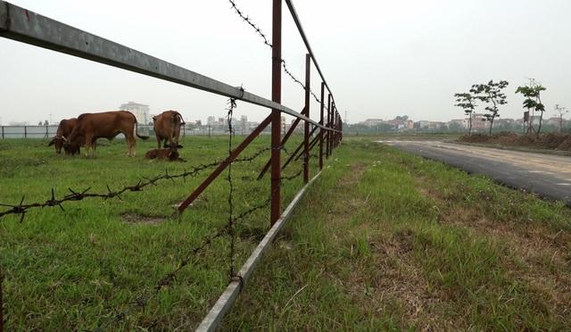 Toàn cảnh khu đô thị 2.000 ha bỏ hoang ở Hà Nội, vừa bị Thủ tướng yêu cầu xử lý - 8