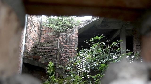 Toàn cảnh khu đô thị 2.000 ha bỏ hoang ở Hà Nội, vừa bị Thủ tướng yêu cầu xử lý - 7