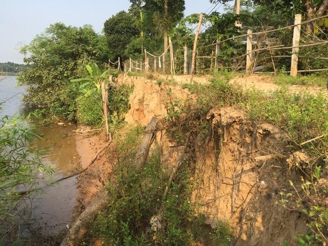 Sạt lở đe dọa hàng chục hộ dân bên bờ sông Thạch Hãn - 5