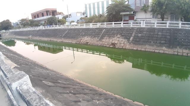 Đà Nẵng: Gần 2 km kênh đổi màu xanh bất thường và bốc mùi - 1
