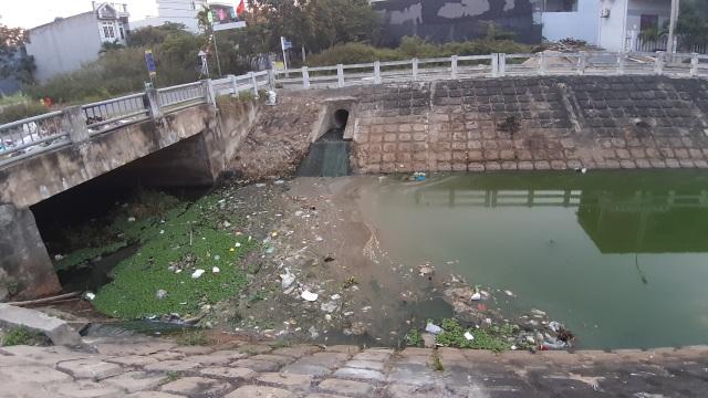 Đà Nẵng: Gần 2 km kênh đổi màu xanh bất thường và bốc mùi - 2