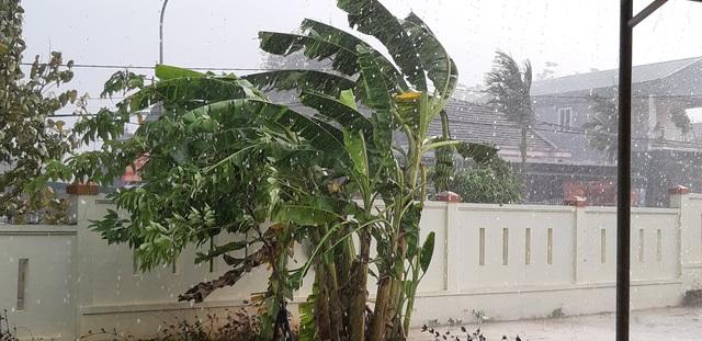 Liên tiếp mưa đá, lốc xoáy khiến hàng trăm ngôi nhà tốc mái - 1