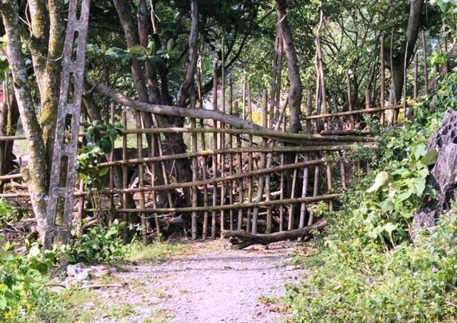 Lập hàng rào ngăn không cho du khách vào tham quan động Tiên Sơn - 1