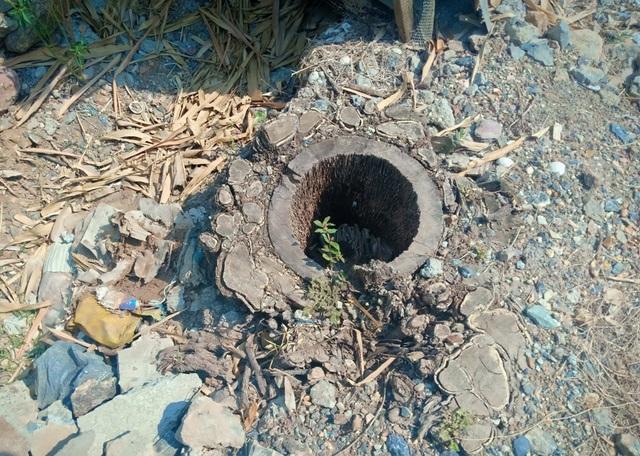 Bi hài vụ chặt cây trên đất đã mua, nguy cơ ngồi tù: Cận cảnh tang vật có gì? - 2