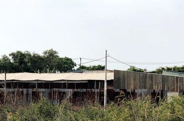 Hàng trăm ha đất cấm bị xẻ thịt tại TP.HCM: Nhà không phép ồ ạt mọc thế nào? - 11