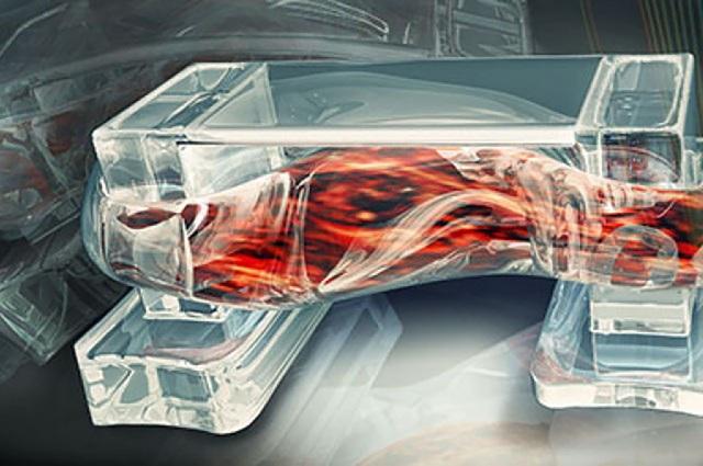 Các nhà khoa học vừa tạo ra một vật liệu sinh học hoàn toàn mới - 1