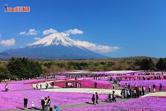 Du lịch Nhật Bản mùa hè trọn gói từ 12,9 triệu đồng - 1