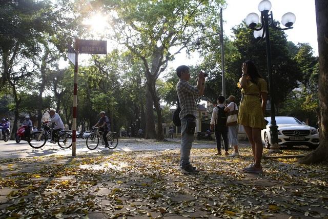 Phố lá vàng rơi siêu lãng mạn ở Hà Nội thu hút người chụp ảnh - 12