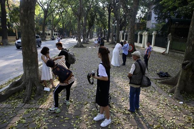 Phố lá vàng rơi siêu lãng mạn ở Hà Nội thu hút người chụp ảnh - 2