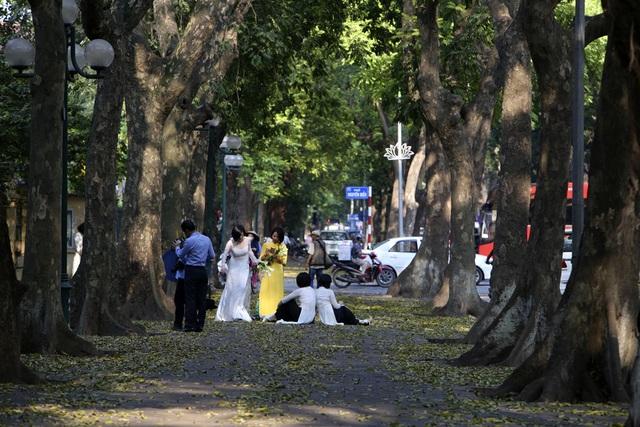 Phố lá vàng rơi siêu lãng mạn ở Hà Nội thu hút người chụp ảnh - 3