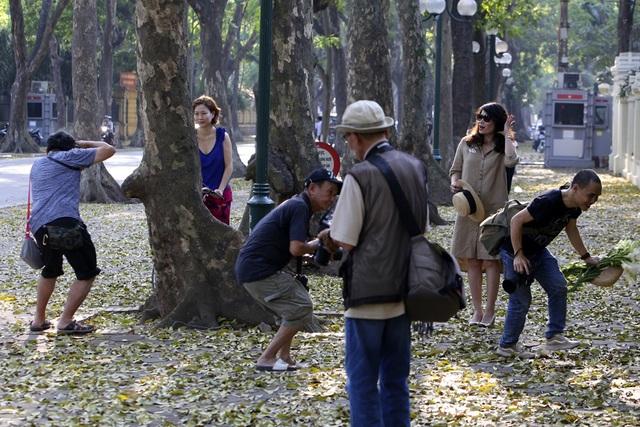 Phố lá vàng rơi siêu lãng mạn ở Hà Nội thu hút người chụp ảnh - 5