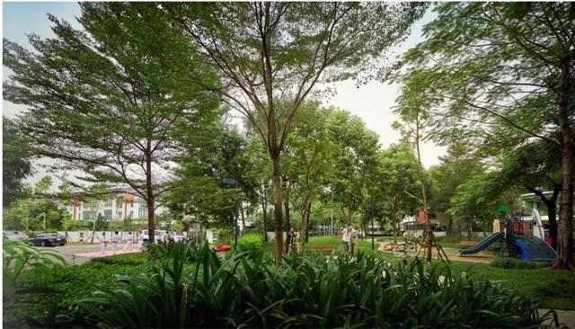 Giải mã nhu cầu tìm không gian xanh tại nội đô Hà Nội - 1