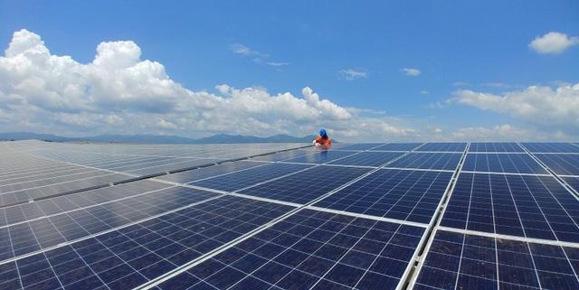 BIM Group chính thức khánh thành cụm 3 nhà máy điện mặt trời 330 MWP - 3