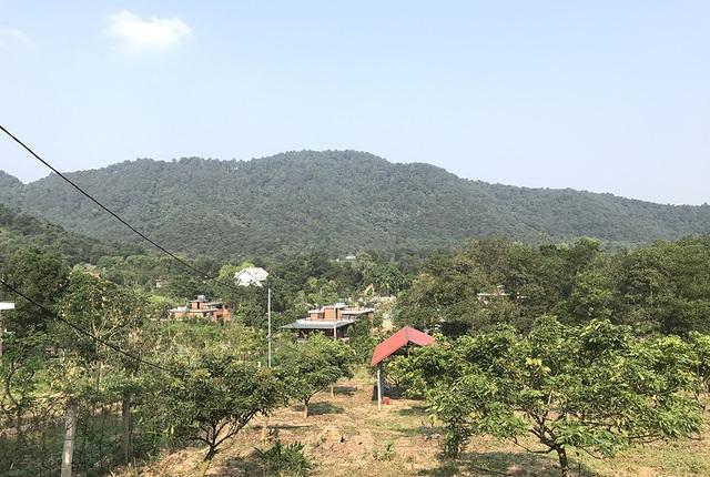 Sóc Sơn đang phá dỡ các công trình vi phạm trên đất rừng - 5
