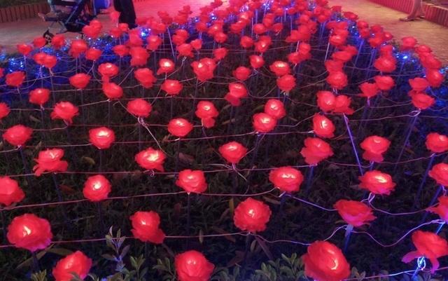 Hấp dẫn với lễ hội ánh sáng lần đầu tiên tại thành phố biển Sầm Sơn - 1