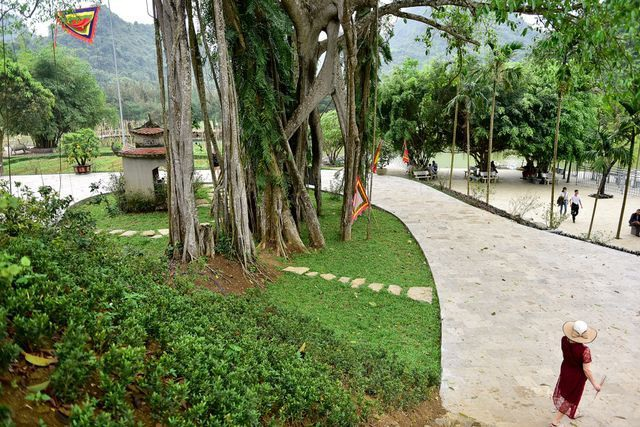 Near the smiling guava trees, the 300-year-old Banyan tree moves once