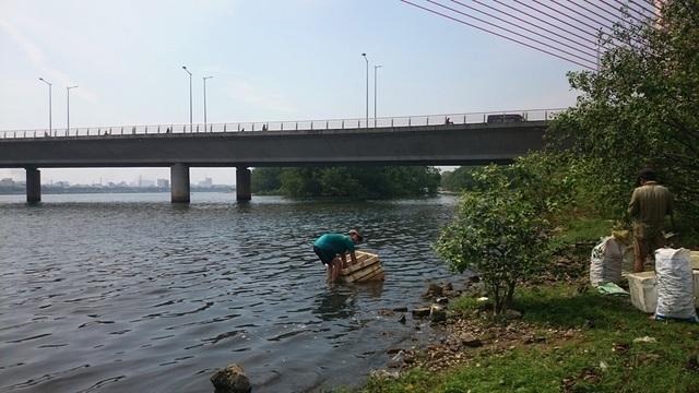 Xuất hiện dòng nước đen ngòm,bốc mùi hôi thối trên sông Hàn - 3