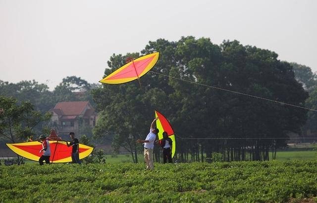 Độc đáo lễ hội diều rực rỡ màu sắc ở ngoại thành Hà Nội - 5